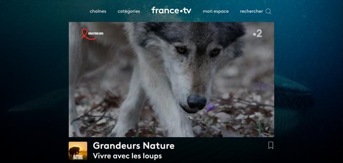 France TV - Après (Avec Surfshark VPN)