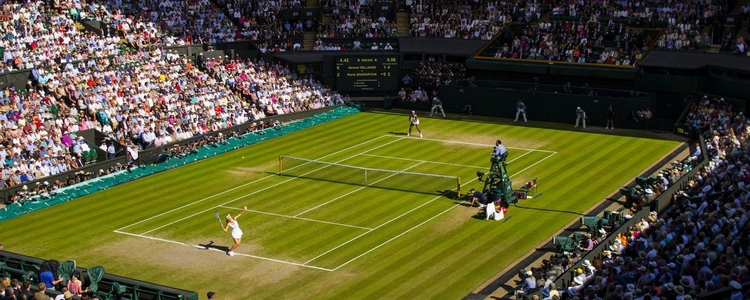 Wimbledon en streaming
